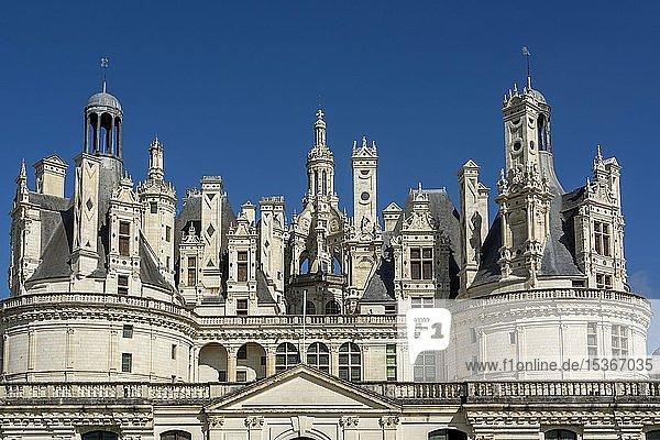 Royal Chateau at Chambord  roofs and chimneys  Loire valley  Loir-et-Cher department  Centre-Val de Loire  France  Europe