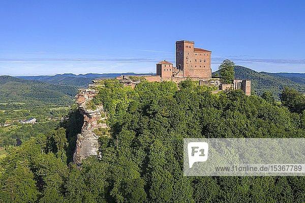 Luftaufnahme der Reichsburg Trifels bei Annweiler am Trifels  Südliche Weinstraße  Rheinland-Pfalz  Deutschland  Europa