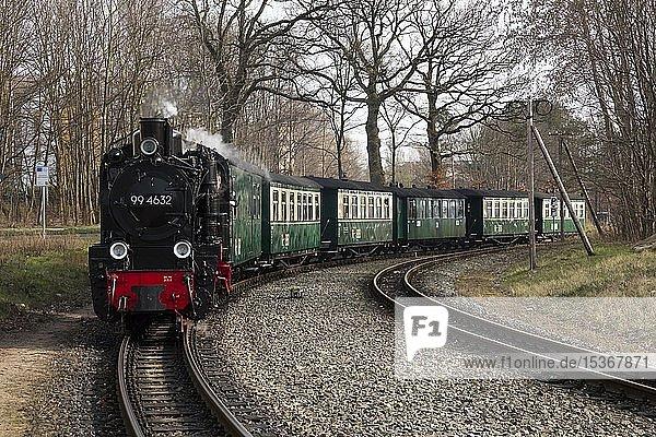 Schmalspurbahn Rasender Roland  Insel Rügen  Mecklenburg-Vorpommern  Deutschland  Europa