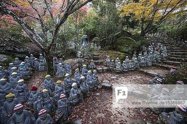 500 Buddhastatuen unter Herbstlaub  Daisho-in Tempelanlage  Miyajima  Japan  Asien