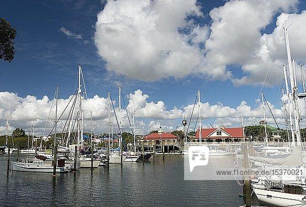 Marina mit Segelbooten in der Bucht von Whangarei mit der großen Uhr des Claphams Clock Museum  Northland  Nordinsel  Neuseeland  Ozeanien