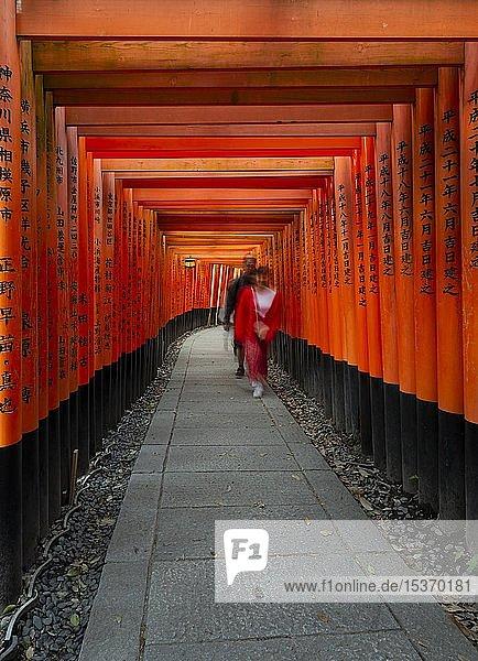 Fußgänger am Fushimi Inari-Taisha  Shinto Schrein  Weg durch hunderte rote traditionelle Torii Tore  Fushimi Inari-taisha Okusha Hohaisho  Kyoto  Japan  Asien