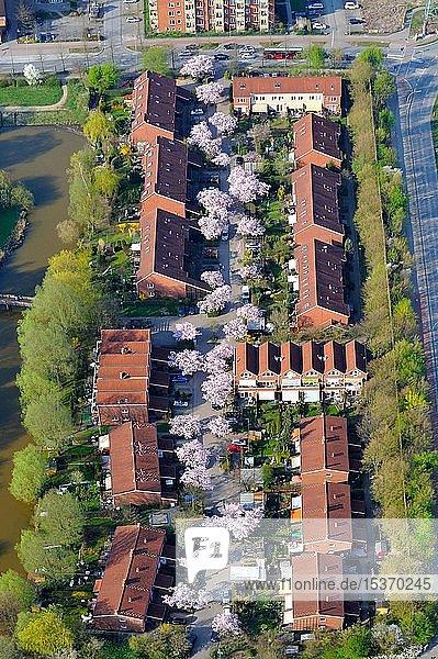 Grüne Siedlung Neu-Allermöhe Ost  Hamburg  Deutschland  Europa