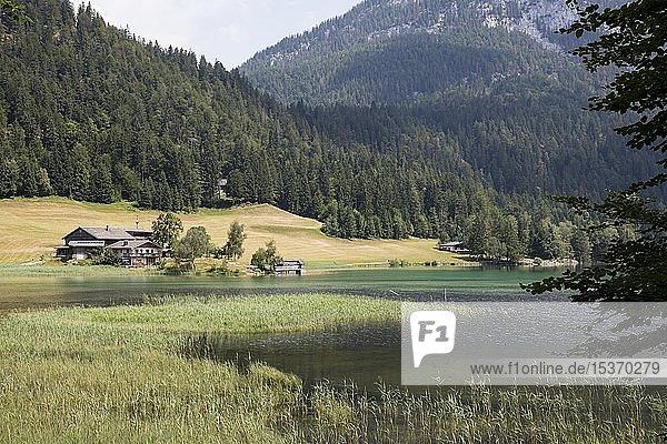 Hintersteiner See  Naturschutzgebiet Wilder Kaiser  Scheffau  Tirol  Österreich  Europa