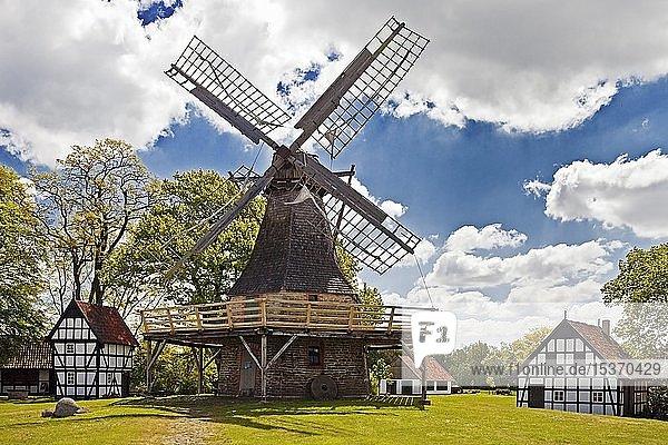 Windmühle Levern  Kolthoffsche Mühle  Kleiner Galerie-Holländer von 1922  Stemwede  Westfälische Mühlenroute  Nordrhein-Westfalen  Deutschland  Europa