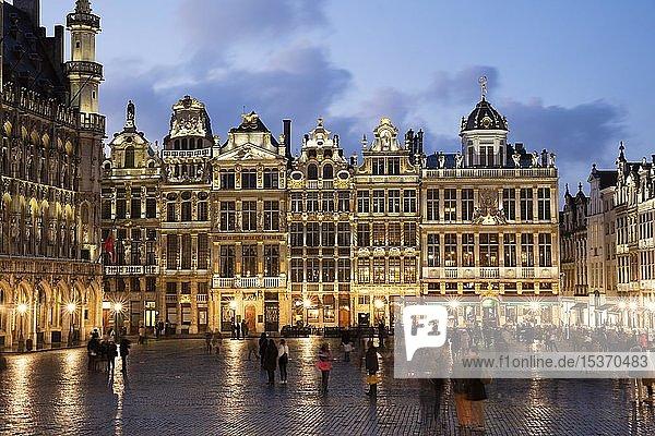 Zunfthäuser und Gildehäuser am Grand Place  Grote Markt  Abenddämmerung  Brüssel  Belgien  Europa