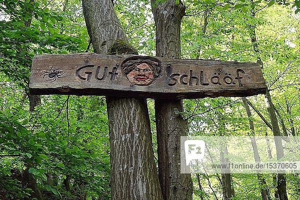 Schriftzug Gut Schlääf auf einem Holzbrett am Wanderweg Steckeschlääfer-Klamm im Morgenbachtal  Binger Stadtwald  Bingen am Rhein  Rheinland-Pfalz  Deutschland  Europa