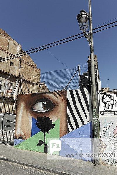 Großes Auge einer Frau und schwarze Rose  abstraktes Graffito  Streetart im Stadtviertel Carme  Altstadt  Valencia  Spanien  Europa