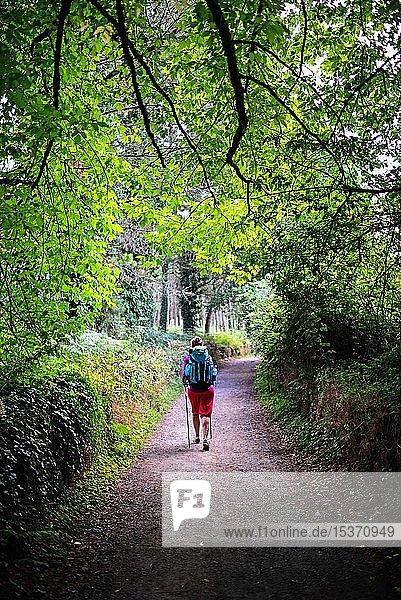 Junge Frau  Pilgerin auf dem Jakobsweg (Camino de Santiago)  Galizien  Spanien  Europa