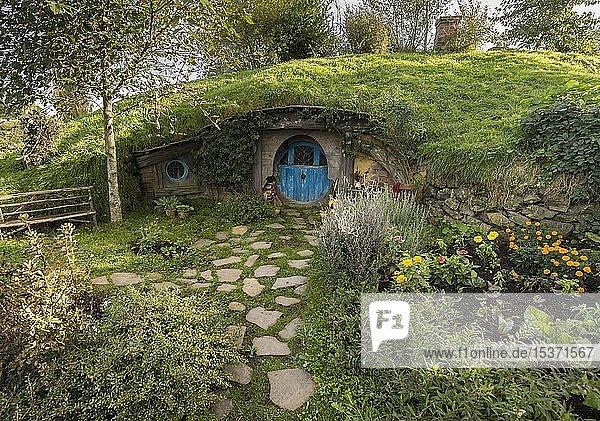 Hobbithöhle mit blauer Tür  Hobbingen im Auenland  Drehort für Herr der Ringe und Der Hobbit Matamata  Waikato  Nordinsel  Neuseeland  Ozeanien
