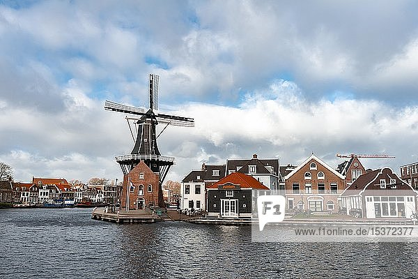 De Adriaan Windmühle am Fluss Spaarne  Haarlem  Nordholland  Niederlande  Europa