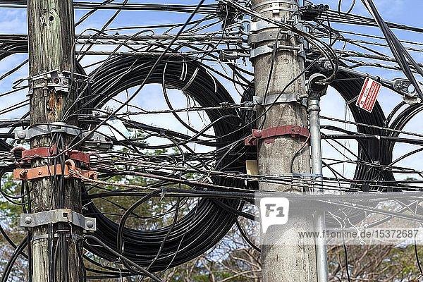 Stromleitungen an einem Leitungsmast  Samara  Provinz Guanacaste  Costa Rica  Mittelamerika