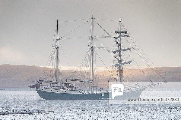 Barkentine Antigua  Snaddvika  Murchisonfjord  Nordaustland  Spitzbergen Inselgruppe  Svalbard und Jan Mayen  Norwegen  Europa