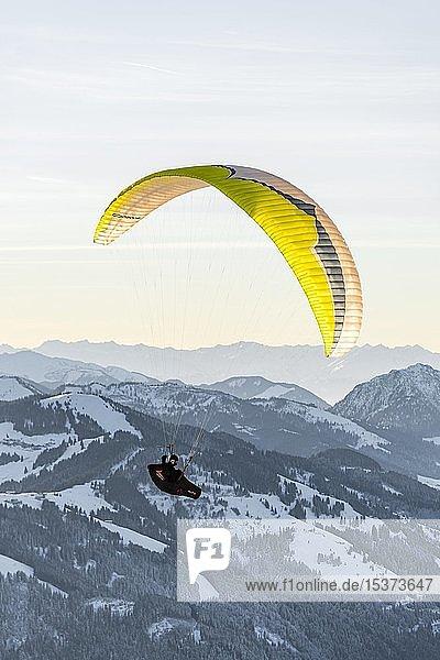 Paraglider in der Luft vor schneebedeckten Bergen im Winter  Brixen im Thale  Tirol  Österreich  Europa