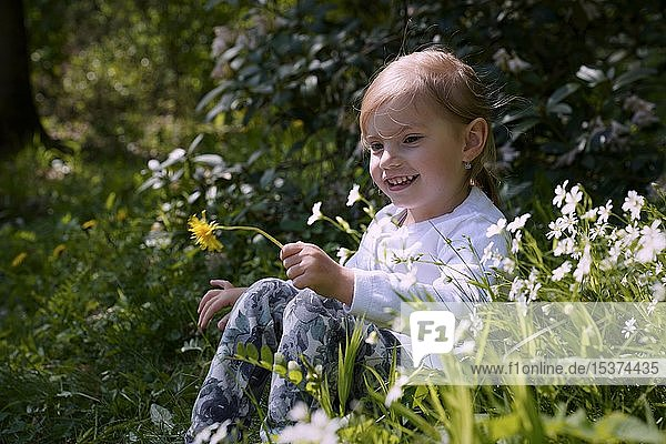 Little girl sitting laughing among flowers on the meadow  Czech Republic  Europe
