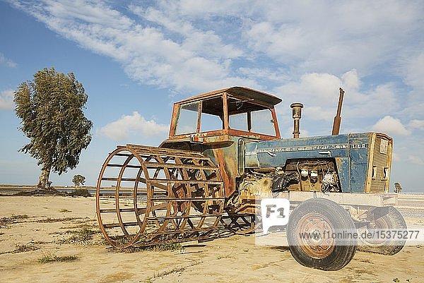 Alter Traktor für Reisanbau  außer Betrieb  Naturschutzgebiet Ebro-Delta  Provinz Tarragona  Katalonien  Spanien  Europa