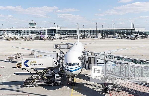 Passagierflugzeug mit angedockter Fluggastbrücke  Flughafen München  München  Deutschland  Europa