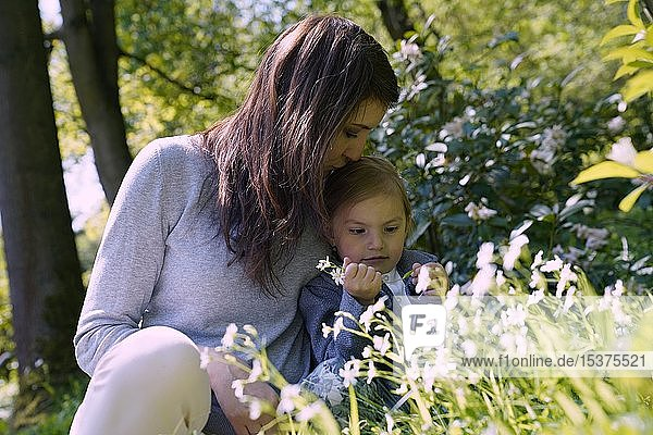Mother sits with little daughter in flower meadow  Czech Republic  Europe