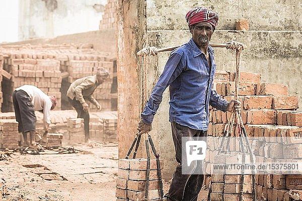 Arbeiter einer Ziegelei transportiert Ziegel  Dhaka  Bangaladesch