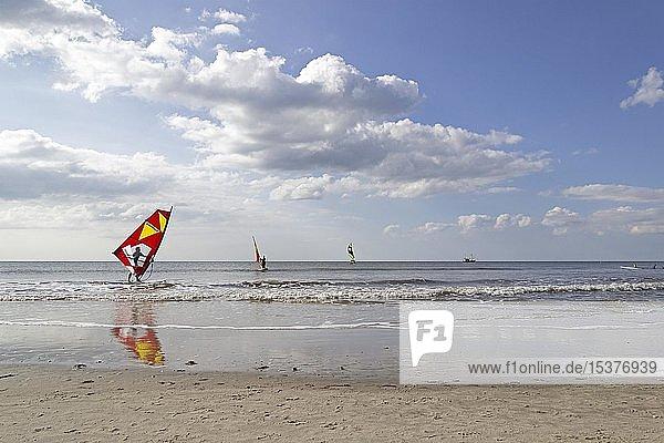 Windsurfer  St. Peter-Ording  Schleswig-Holstein  Deutschland  Europa