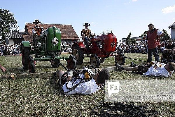 Disziplin Traktorziehen  Highlandgames in Kreenheinstetten  Landkreis Sigmaringen  Baden-Württemberg  Deutschland  Europa