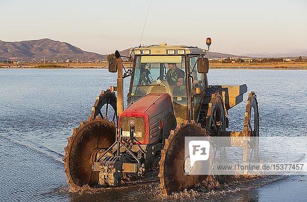 Traktor bei der Aussaat von Reis in einem überfluteten Reisfeld  Naturschutzgebiet Ebro-Delta  Provinz Tarragona  Katalonien  Spanien  Europa