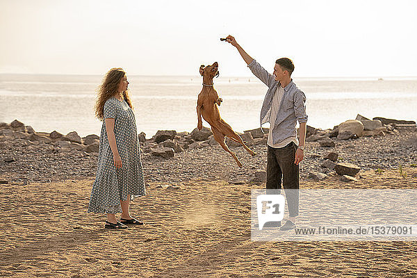 Young couple with dog at the beach  dog jumping
