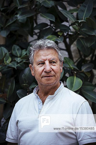Porträt eines älteren Mannes mit Blatthintergrund