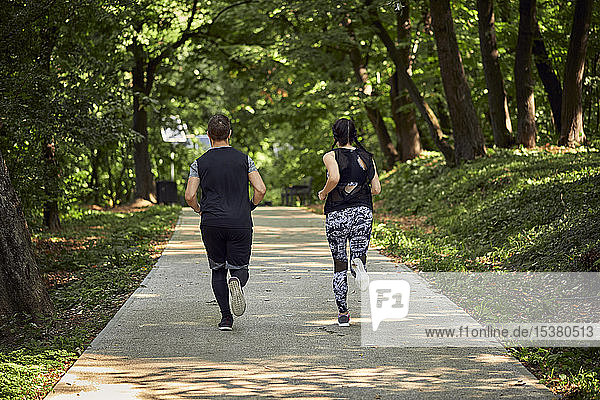 Rückansicht eines sportlichen Paares  das auf einem Waldweg läuft
