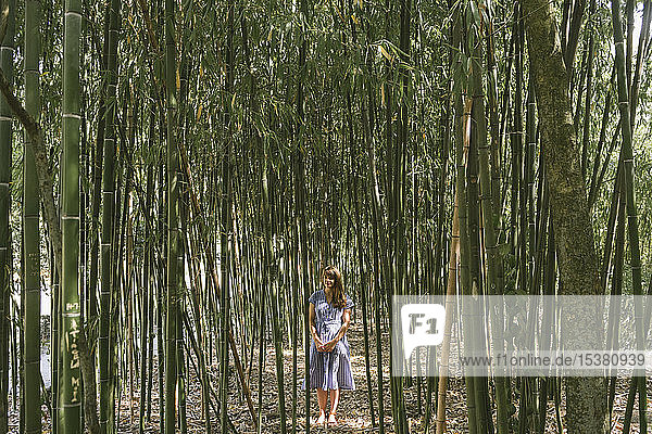 Frau  die in einem Bambuswald steht  Aveiro  Portugal