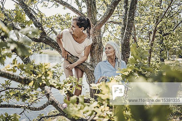 Mutter und Tochter amüsieren sich  klettern auf einen Baum