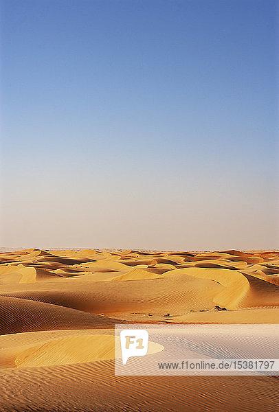 Sultanat Oman  Wahiba-Sand  Dünen in der Wüste