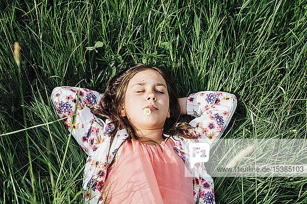 Porträt eines sich auf einer Wiese entspannenden Mädchens mit Gänseblümchen im Mund
