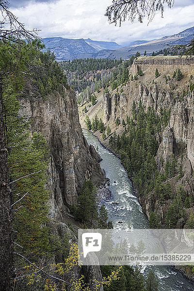USA  Wyoming  Yellowstone-Nationalpark  Fluss Yellowstone  der durch eine Sandsteinschlucht fließt