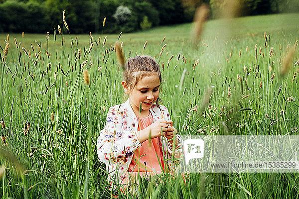 Porträt eines glücklichen Mädchens auf einer Wiese