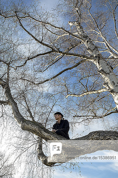 Man sitting in tree looking out