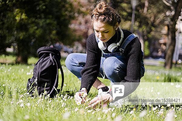Junge Frau pflückt Gänseblümchen in einem Park