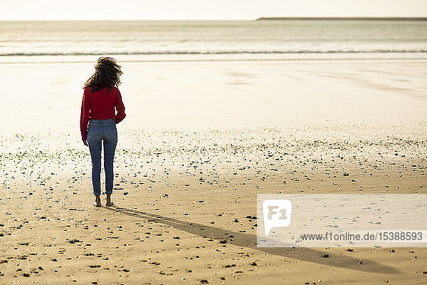 Rear view of young woman standing on the beach at sunset