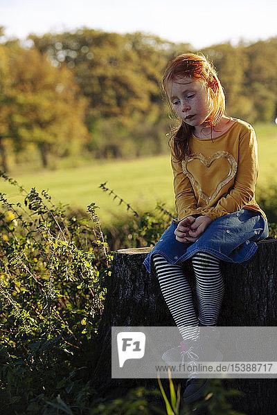 Redheaded girl sitting on a tree stump