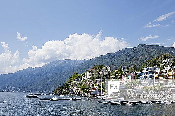 Switzerland  Ascona  Lake Maggiore  lakeshore