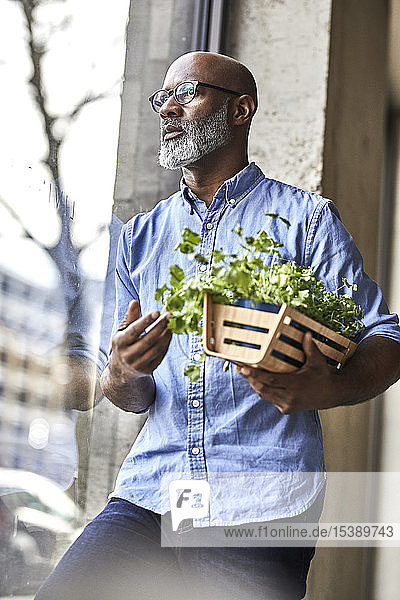 Mature businessman holding plants looking out of window
