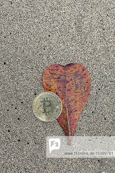 Bitcoin an einem Sandstrand mit verwelktem Blatt