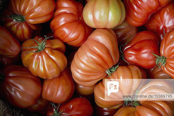 Ochsenherz-Tomaten auf dem Markt