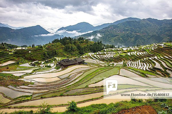 Add list terraces  guizhou province  xiasi  miao and dong autonomous prefecture  congjiang county  and the moon mountain  west township list