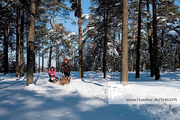 Family in the forest in winter