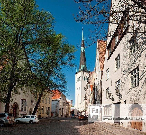 St Olaf church  Lai Street in Tallinn