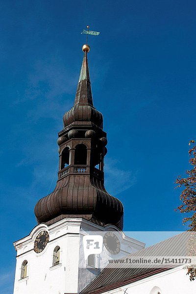 The Tower of the Dome Chuch in Tallinn