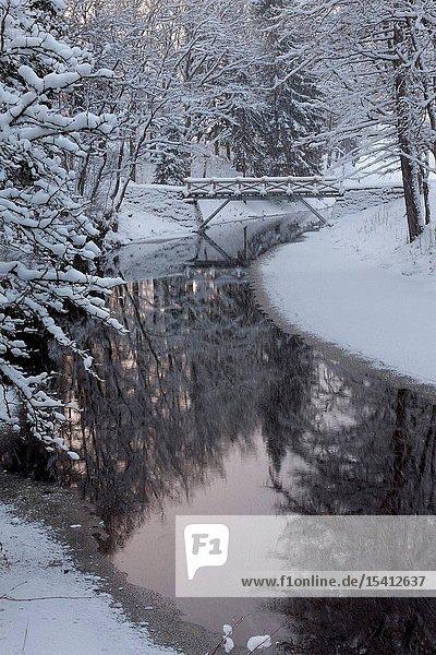 Winter in Vihula Manor Park
