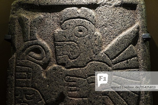 The stone deities of Chavin (1000 BC to 100 AC). Culture of Chavín. Art Museum of Lima  Lima  Peru-.