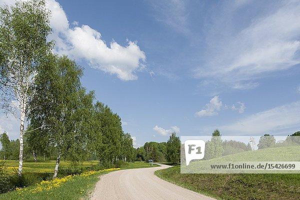 Mikilä  Karula Nature Reserve in Võru county  South Estonia